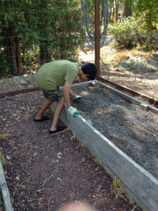 Elementary student prepares garden bed for planting